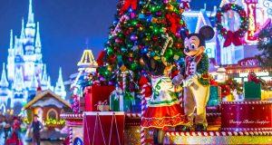 Castle Night Float Merry Christmas Disney World
